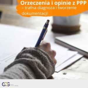 Orzeczenia i opinie z PPP - trafna diagnoza i tworzenie dokumentacji