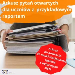 arkusz pytań z raportem