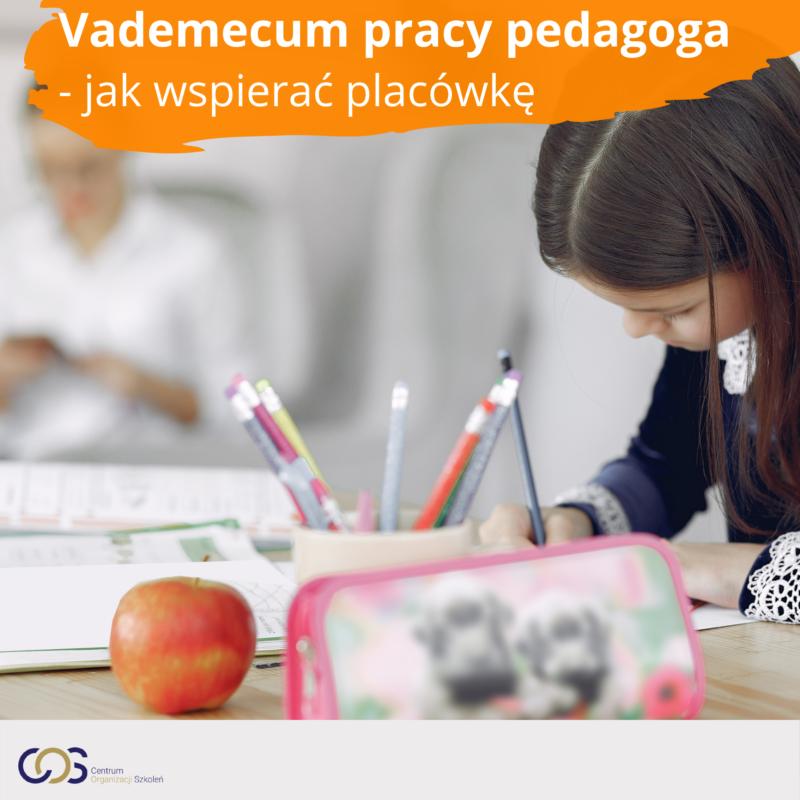Vademecum pracy pedagoga – skuteczne wspieranie placówki w realizacji zadań